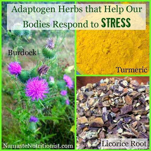 herbs that help you with stress