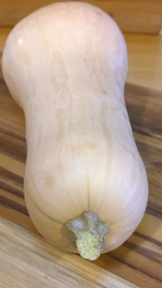 Butternut squash uncooked