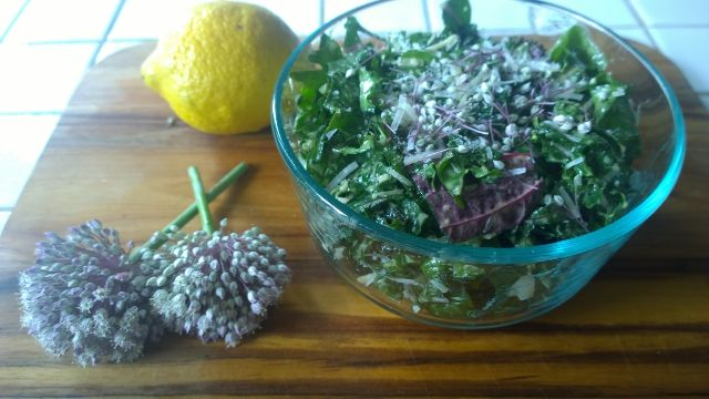 Kale - Chard_Caesar Salad 7